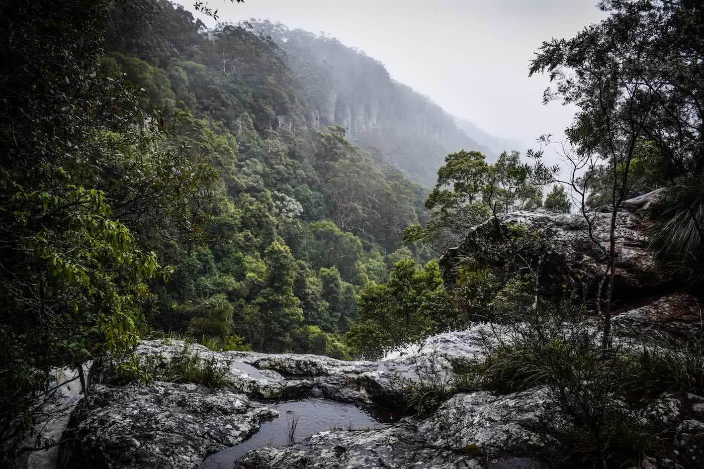 7 Tips For Wet Weather Hiking Lisa Owen, lookout, misty views, rainforest,