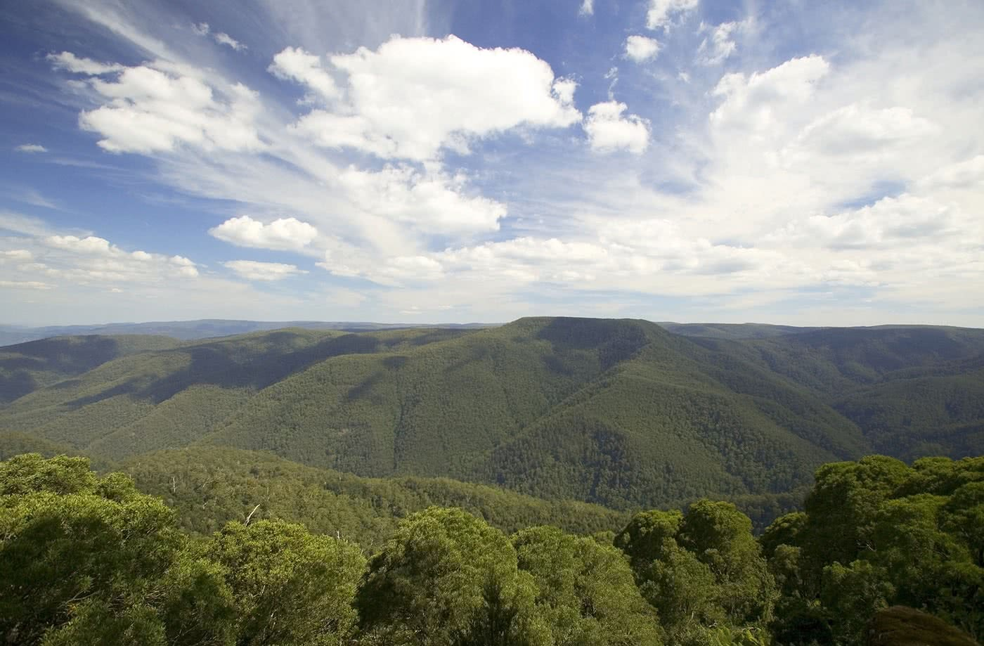 10 Microadventures You Can Do In Dungog, Thunderbolts Lookout, Barrington Tops NP, photo by Destination NSW