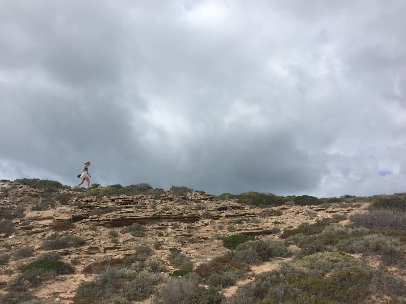 Highlights From Crossing The Nullarbor Plain Ashlee Kehoe-Sporton cliff, ocean, great Australian Bight, Cactus Beach