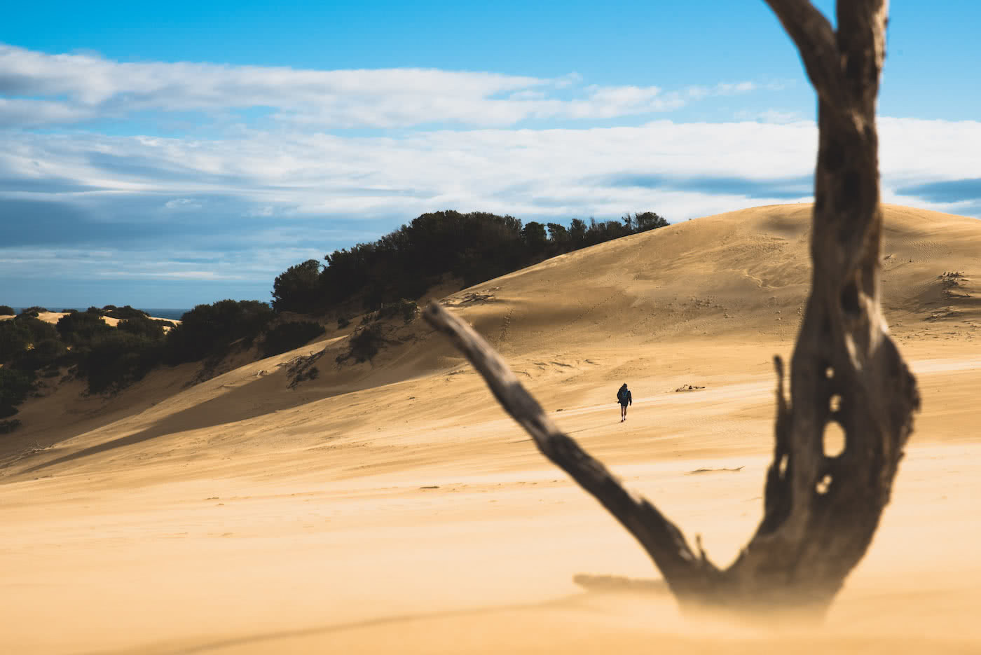 The Best Camping Near Melbourne, shot by Pat Corden, Wilson's Promontory, sand dunes, beach, coastal, victoria, near melbourne