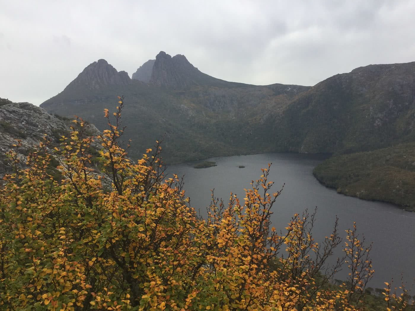 The Changing Of The Seasons // Cradle Mountain (TAS) Riley de Jong turning of the fagus, lake st clair
