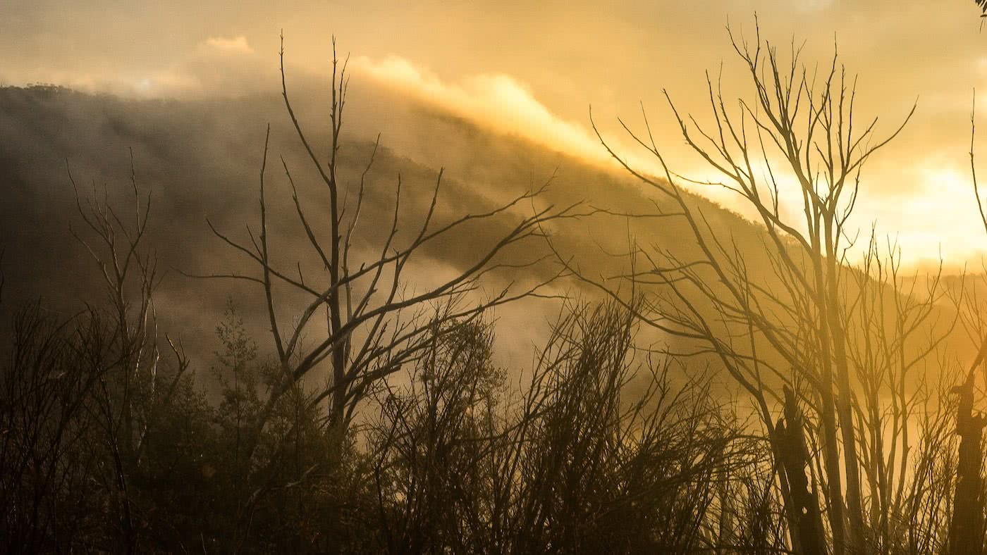 Knowing When To Call It by Lachie Thomas hiking, mountain view through the fog