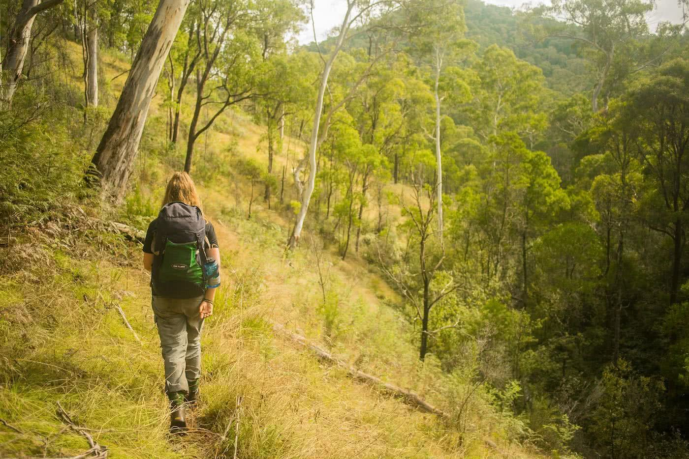 Knowing When To Call It by Lachie Thomas hiking, hiking trail
