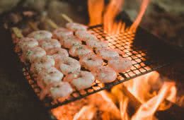 alton goods, win an ultralight titanium grill, prawns, fire, camp kitchen, cooking