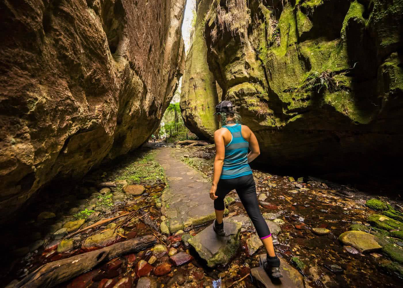 The Best Multi-day Hikes in Queensland Miranda_Fittock_Carnarvon gorge, hiking,