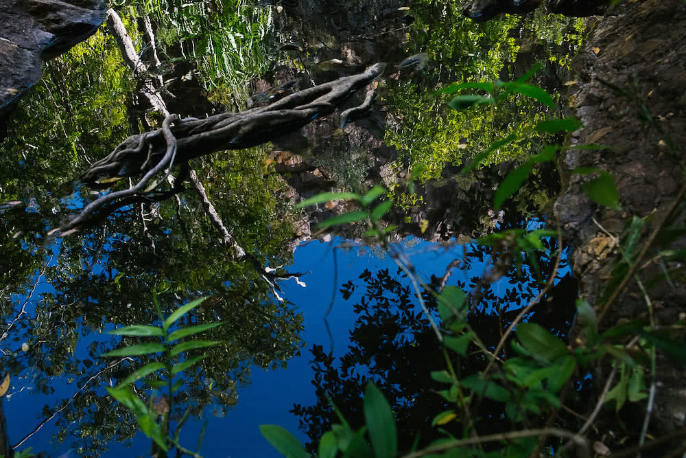 Bininj Country, waterhole, photo by Bee Stephens, northern territory