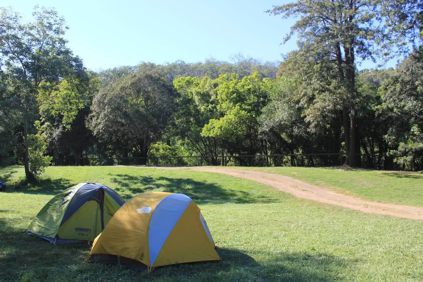 9 Awesome Dog Friendly Campsites Near Brisbane by Saphira Schroers, Glastonbury Creek Campground, tents