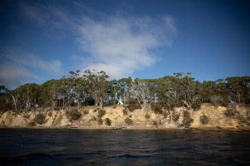 Satellite Island, photo by Tim Ashelford, Talisker Whisky, Tasmania, tent