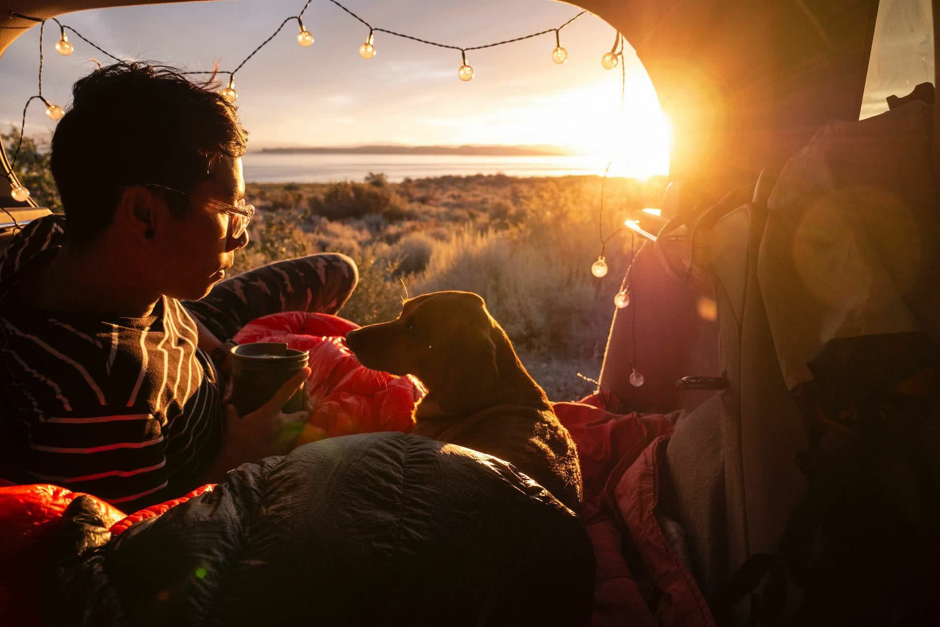 The Best Dog Friendly Camping In Victoria, Pat Corden, photo by Hoang M Nquyen from Unsplash, dog, tent, person, lake, sunset, lights, sleeping bag