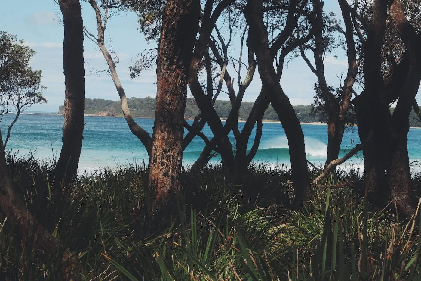 Bikes, beaches and plenty of coffee // South Coast (NSW) Nick Kohn, perfect surf, forest