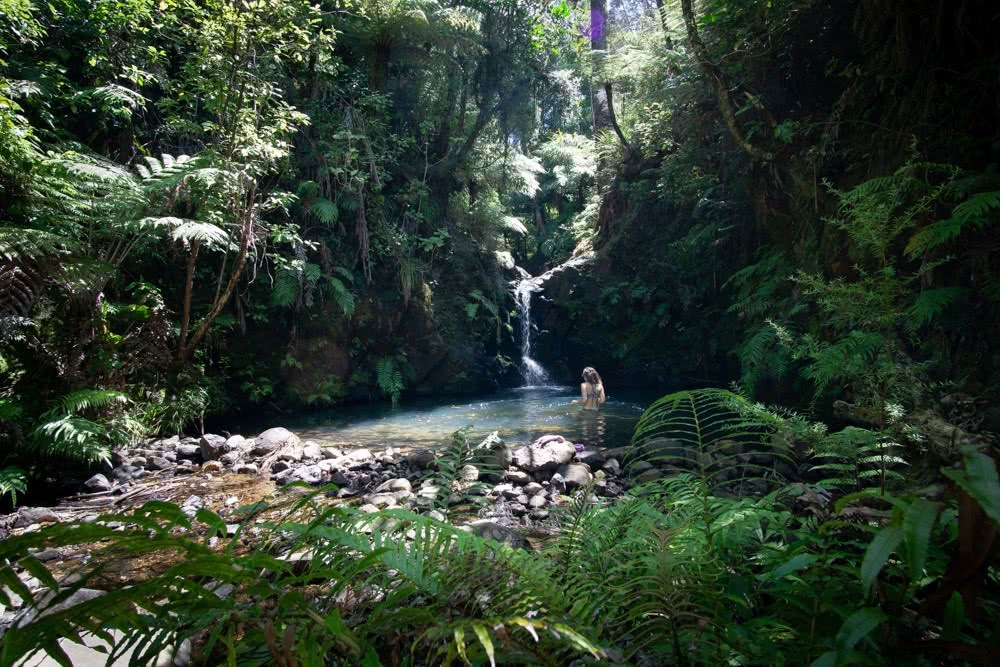 Aotea Track // Great Barrier Island (NZ) by Isobel Campbell, Waterfall Day 4
