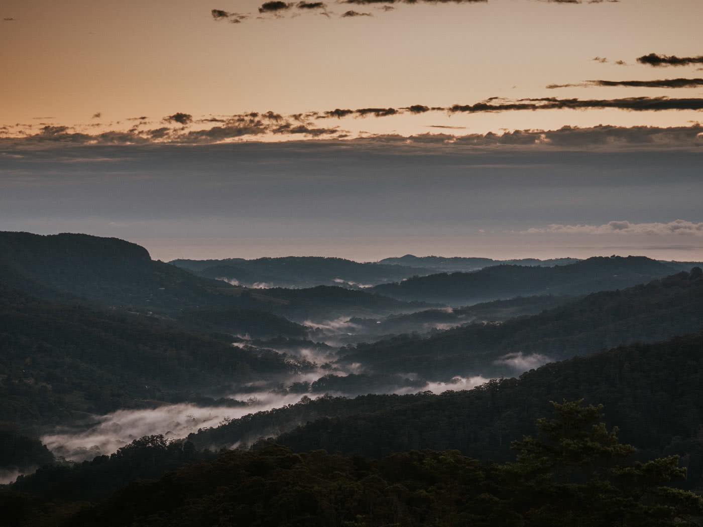 A Jurassic Peak Hidden In The Hinterlands // Mount Cougal (QLD) by Rhys Tattersall, valley, clouds, sunrise