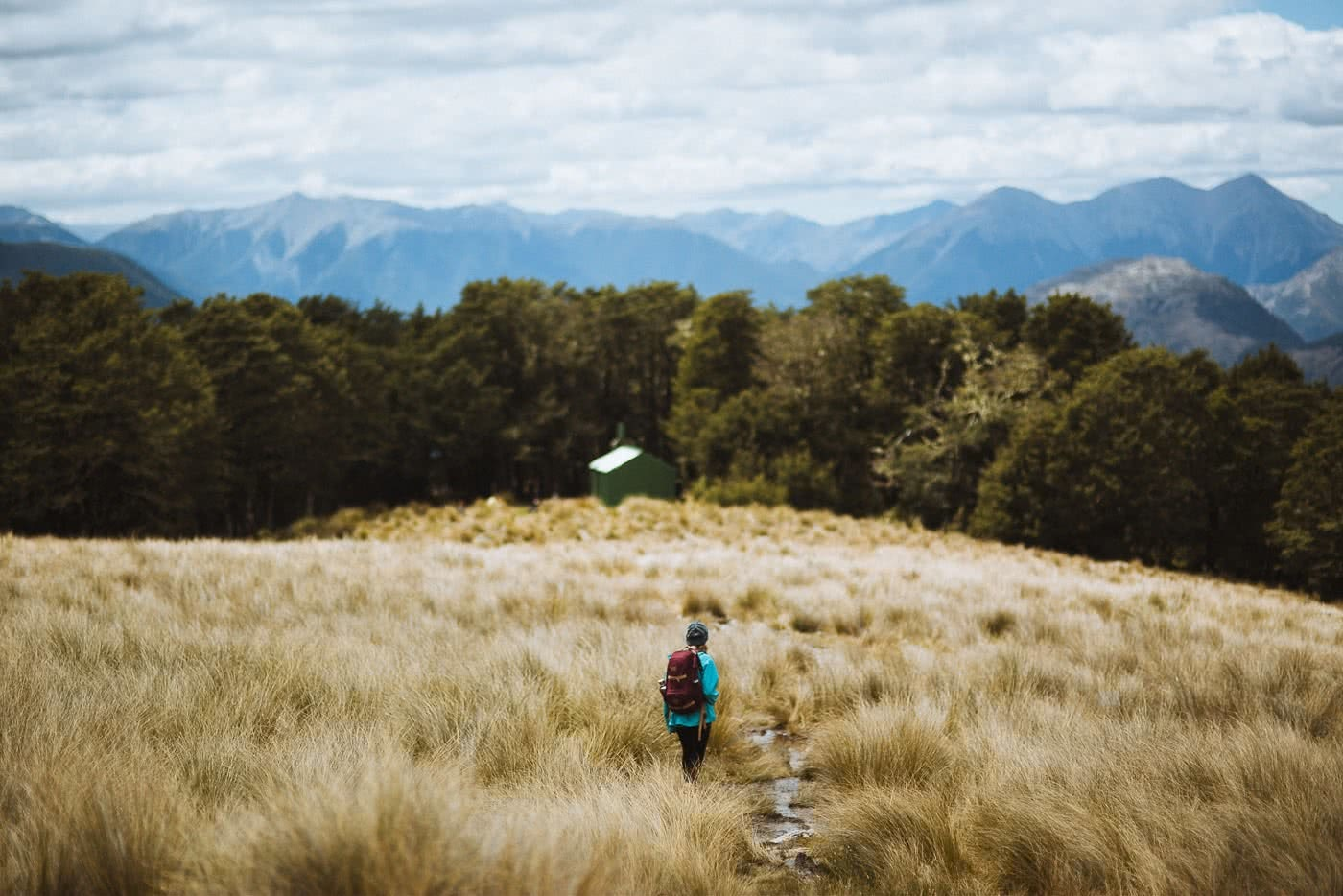 Bealey Spur // Day Hike in Arthurs Pass (NZ), mountains, grass, woman from behind, hut
