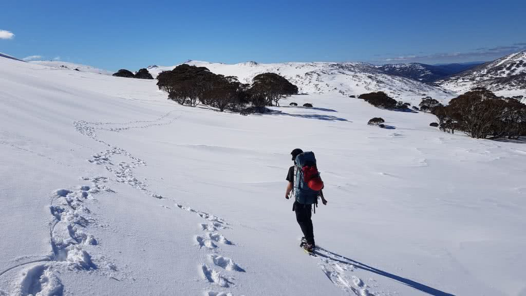 Snowshoeing Across The Aussie Alps, snow, tracks, man, mountains