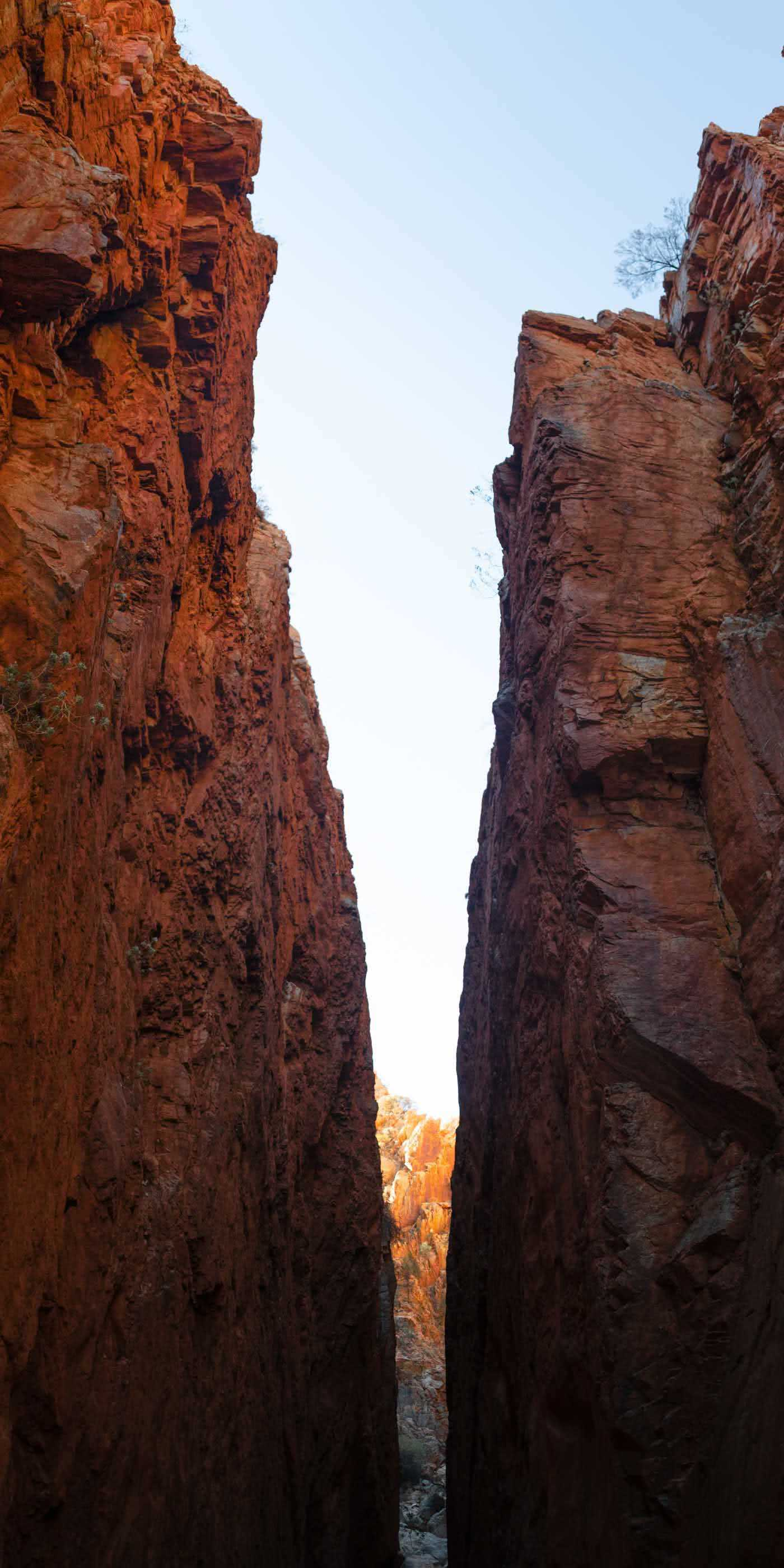 Capturing The Landscapes Of The Larapinta, Conor Moore, photo 11, Standley Chasm, Panorama, cliffs, sky, red rock, sunlight