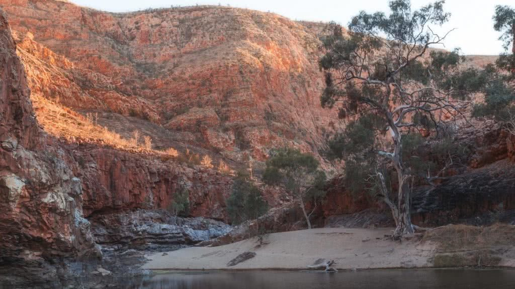 Capturing The Landscapes Of The Larapinta, Conor Moore, photo 4, ormiston gorge, creek, trees, red dirt, cliffs