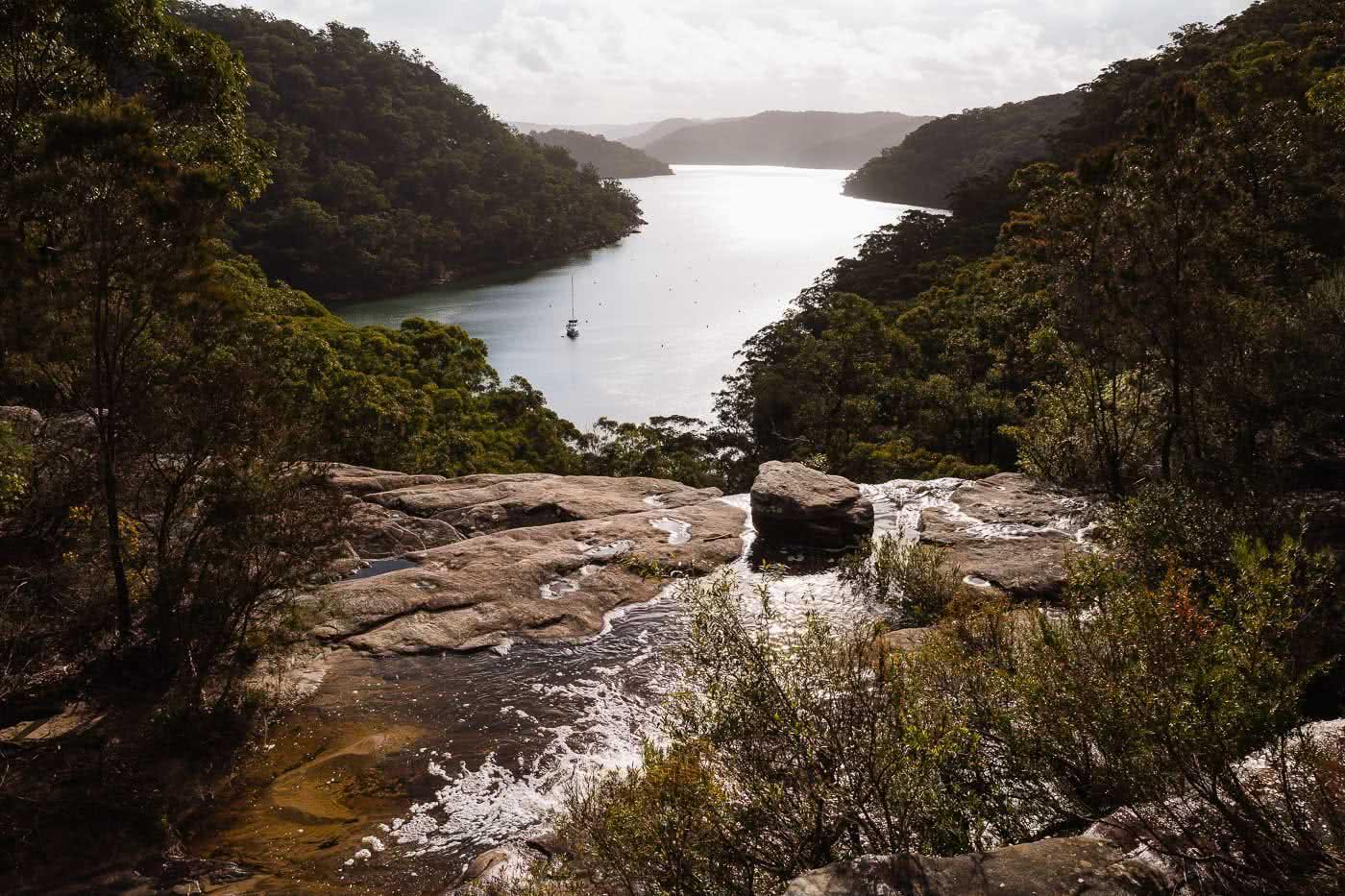 Wildflowers And Waterfalls At America Bay (NSW), Aedan O'Donnell, Hawkesbury River, rocks, trees, bay, waterfall