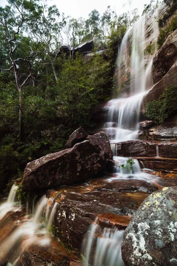 Wildflowers And Waterfalls At America Bay (NSW), Aedan O'Donnell, waterfall, rocks, trees