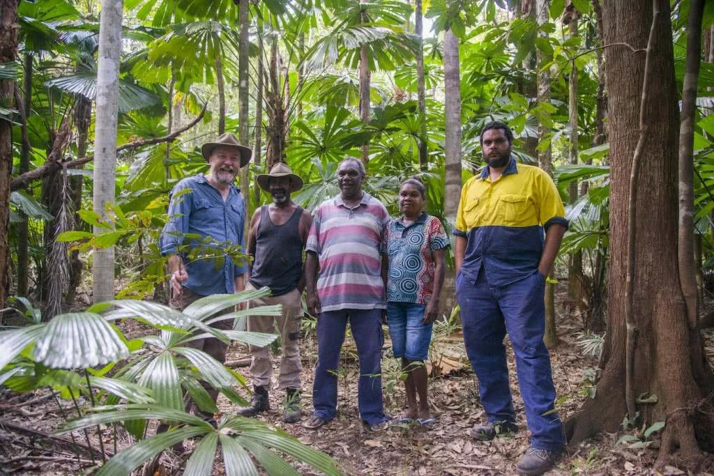 We're Buying A Hectare of Rainforest in Far North Queensland! Here's Why, Kate Stevens, Andrew, Jabalbina and Kelvin, Indigenous, rainforest, trees, workers