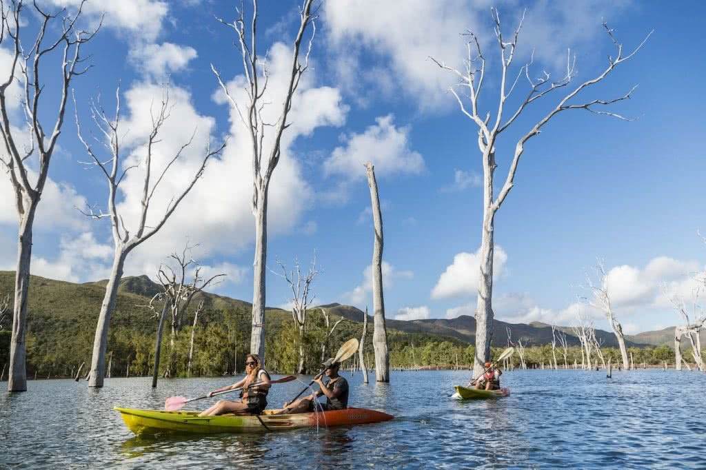 How Much Do You Really Know About New Caledonia?, photo supplied by New Cal tourism, credit Terres de Lumiäre NCTPS, kayak, water people, trees, sky