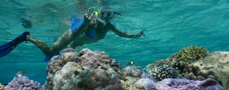 Save Your Skin & The Sea: Ocean Safe Sunscreen, Alice Forrest, snorkel, coral, fish, underwater, reef, flippers, swimmer