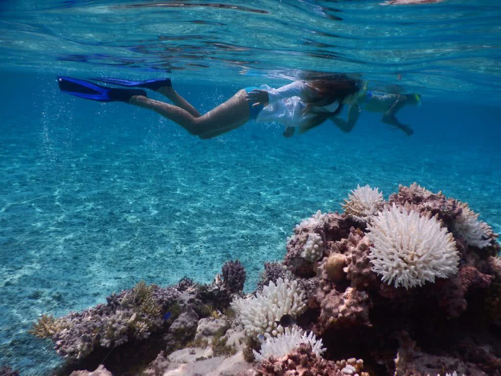 Save Your Skin & The Sea: Ocean Safe Sunscreen, Alice Forrest, snorkelling, reef, coral, pink, underwater, ocean