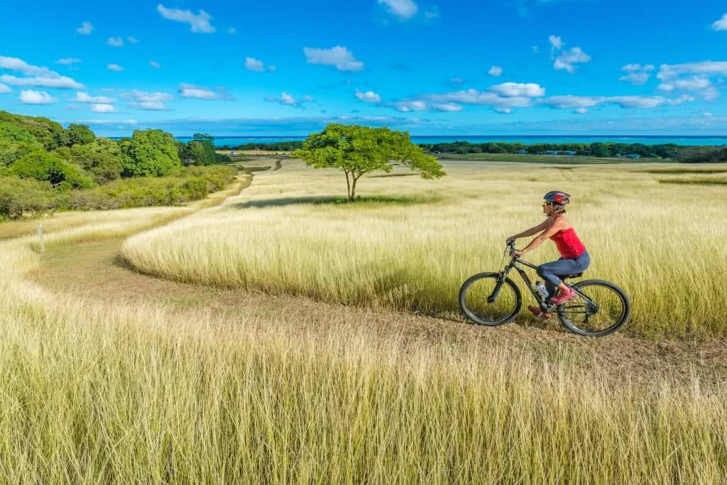 How Much Do You Really Know About New Caledonia?, photo supplied by New Cal tourism, big riding, grass, trees, path
