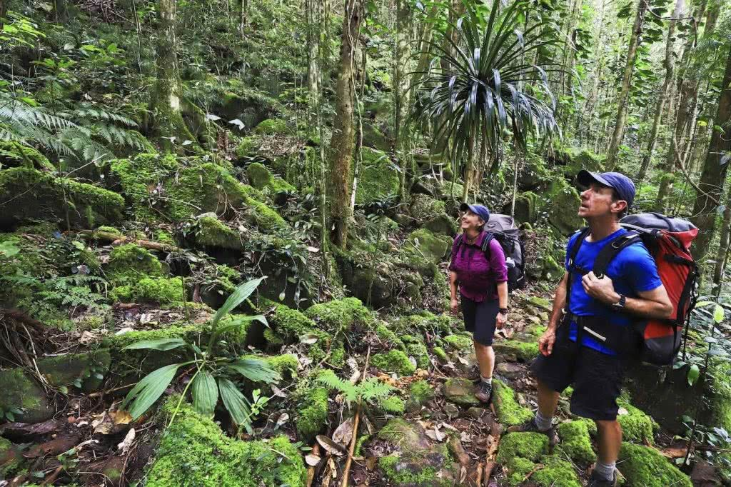 How Much Do You Really Know About New Caledonia?, photo supplied by New Cal tourism, rainforest, people, hiking