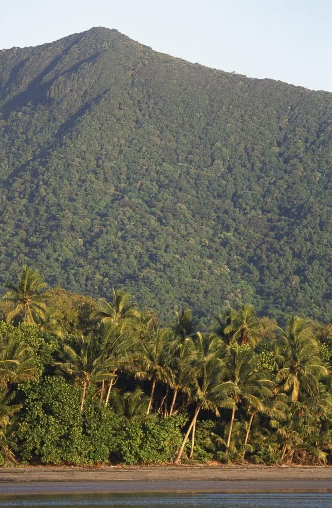 Land Before Time: Exploring the Daintree (QLD), Kate Stevens, Mt Sorrow, rainforest, mountains, beach, sky