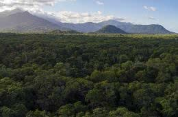 We're Buying A Hectare of Rainforest in Far North Queensland! Here's Why, Kate Stevens, mountains, rainforest, landscape