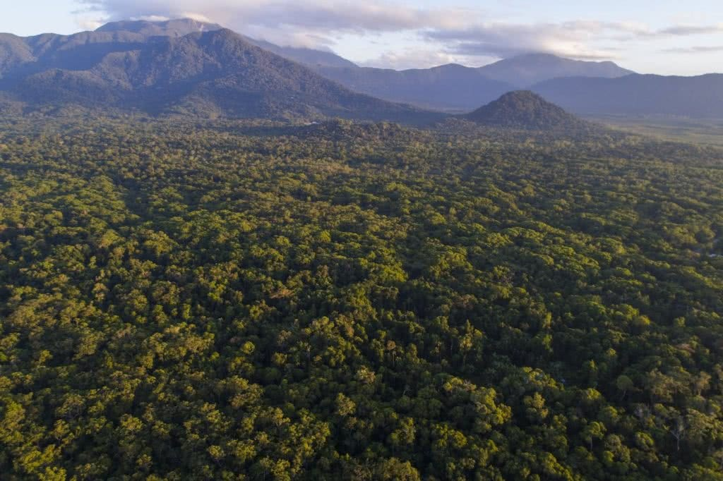 We're Buying A Hectare of Rainforest in Far North Queensland! Here's Why, Kate Stevens, mountains, rainforest, sky, landscape