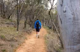 5 Reasons Why Walking to Work Can Make You a Better Hiker by Mattie Gould Walkin to work through a nature reserve