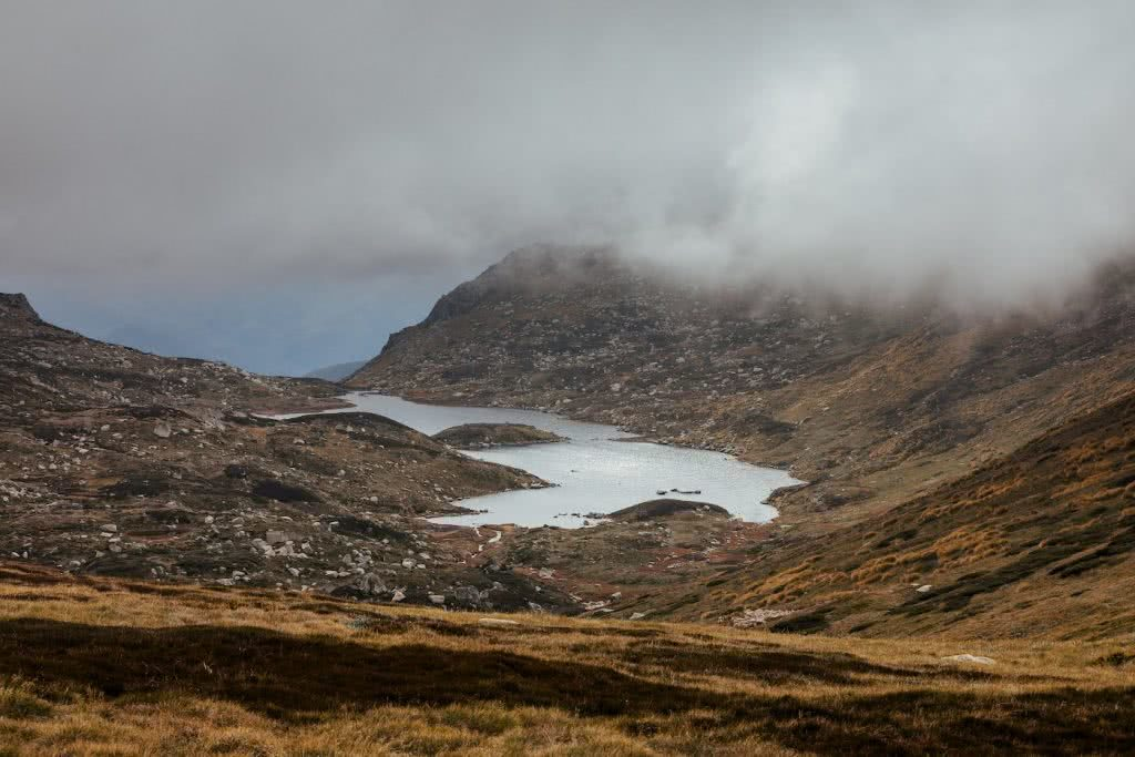 Almost Alone In The Aussie Alps, Aedan O'Donnell, Charlotte's Pass, Blue Lake, mountains , fog, mist, grass
