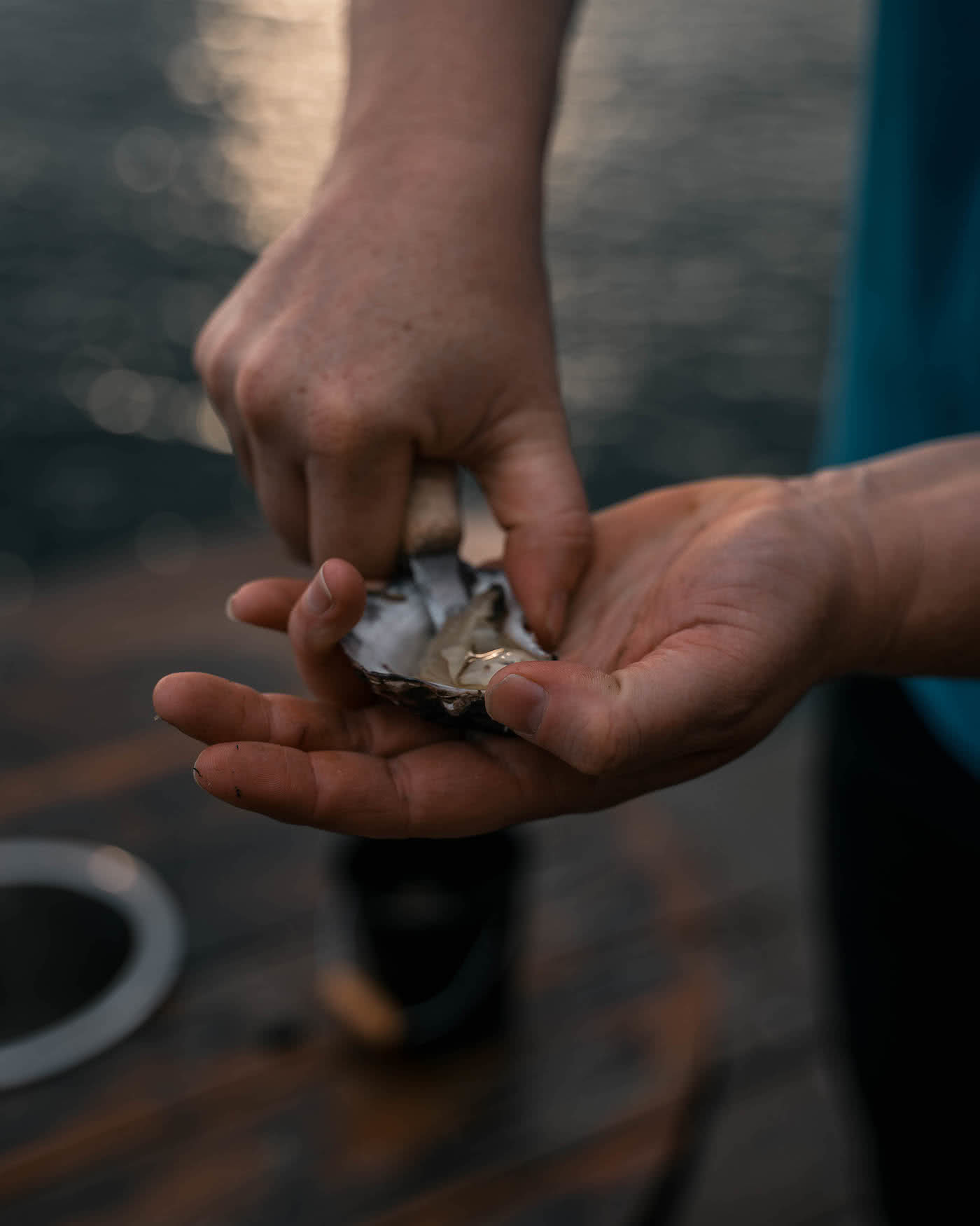 8 Great Reasons To Take Your Mates To Eurobodalla, photo by Fin Matson, Wray Street Oyster Shed, oyster, hand, shucking
