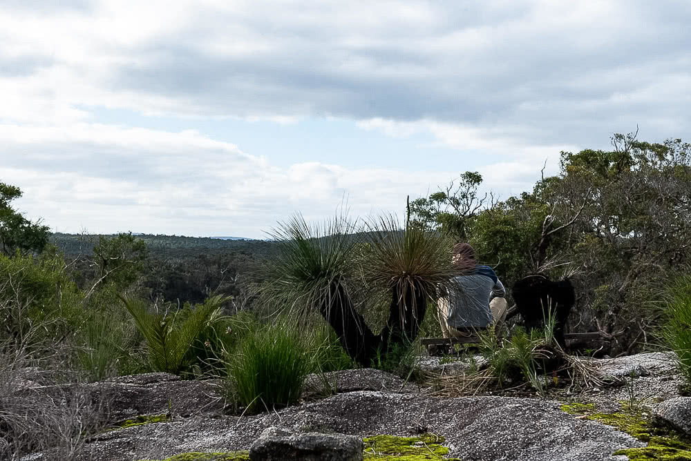 Forest Adventures In Mount Frankland National Park, photo by Megan Warner, western australia, top of Mount Burnett