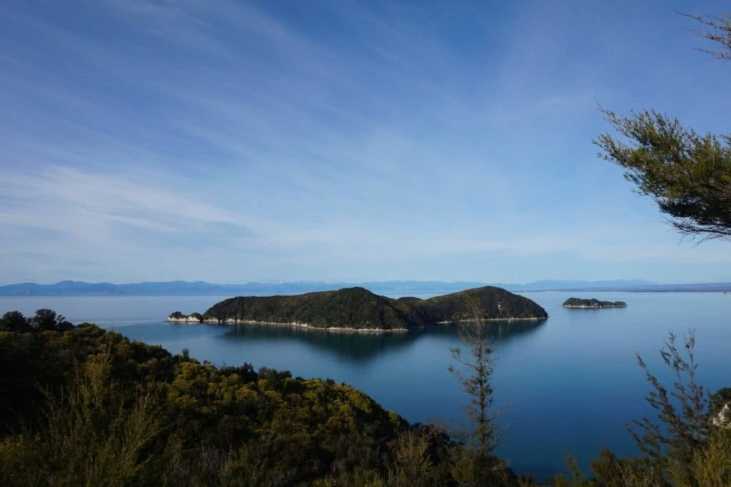 Make New Zealand Your Next Solo Road Trip Destination, Amy Fairall, Adele Island, Abel Tasman National Park, ocean, trees