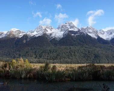 Make New Zealand Your Next Solo Road Trip Destination, Amy Fairall, mountains, snow capped, Milford Sound, grass, field