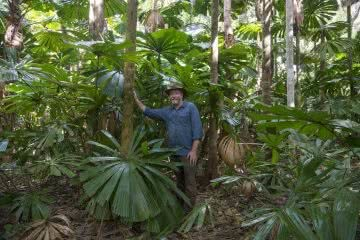 Protecting The Earth's Oldest Rainforest // Interview With Kelvin Davies, photo by Steven Nowakowski, Kelvin, daintree, trees, palms