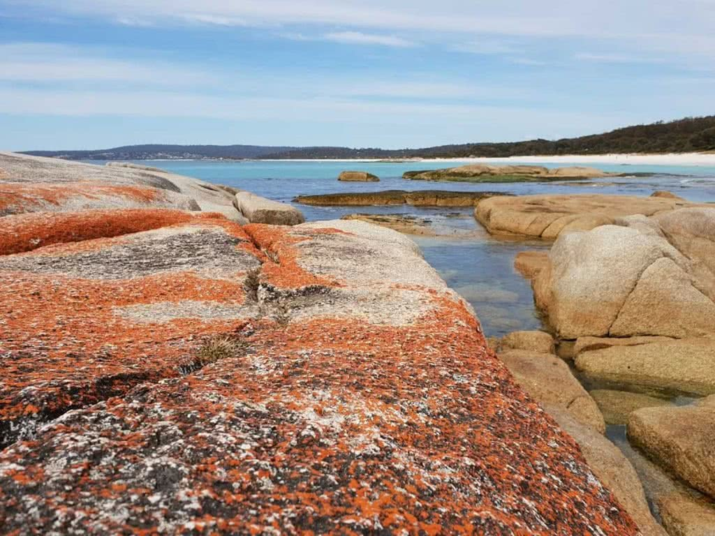 Family Fun At The Bay Of Fires, Leonie Waldron, lichen, rocks, water