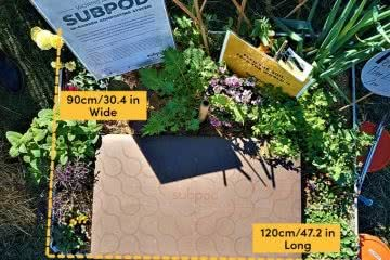Subpod Will Reduce Your Carbon Footprint & Make Your Garden A Greenspace, photo provided by Subpod, garden, plants