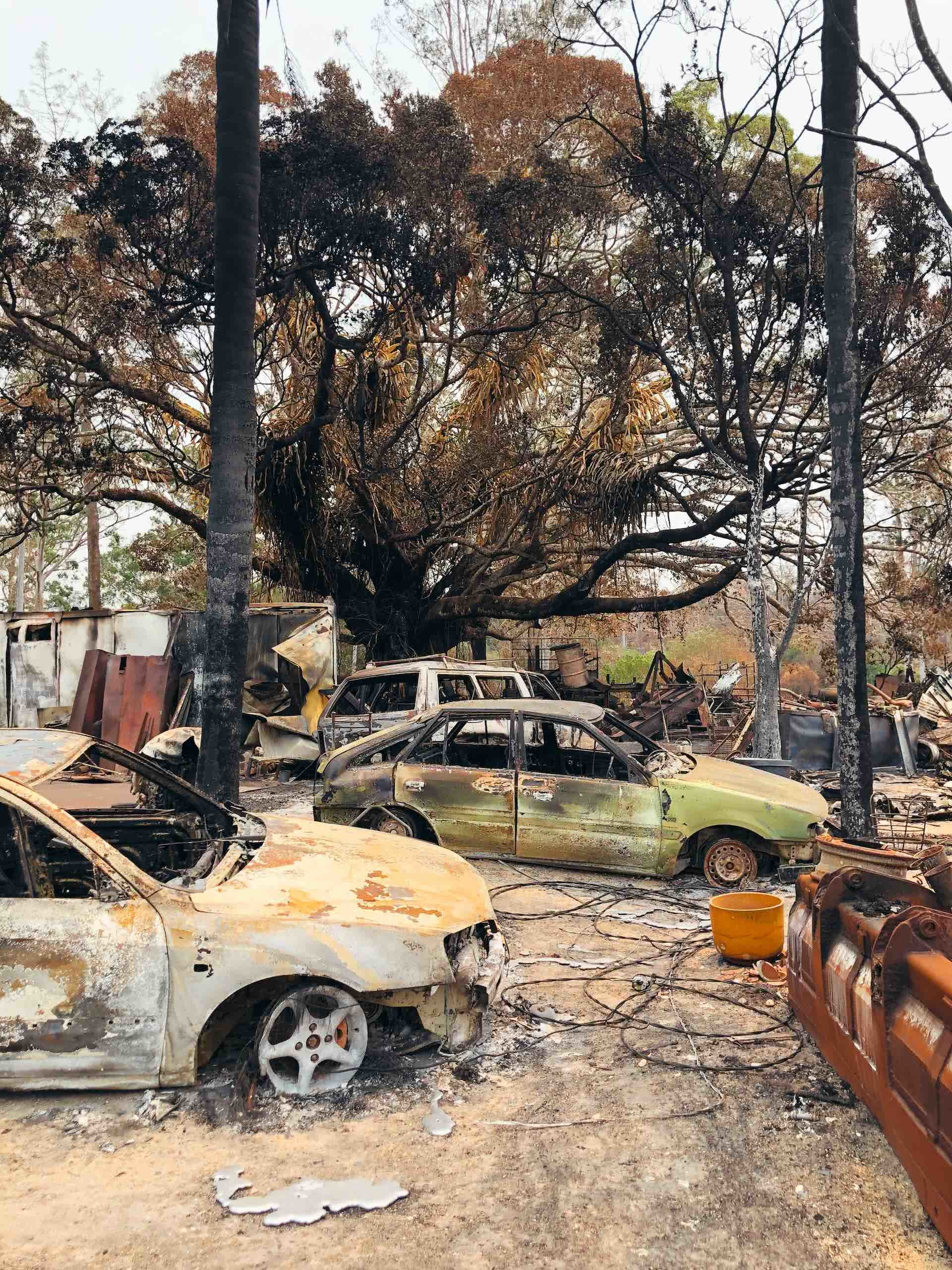 After The Flames – What Does A Bushfire Leave Behind?, Amy Fairall, photo by Anouk Berney, cars, trees, burnt, dirt