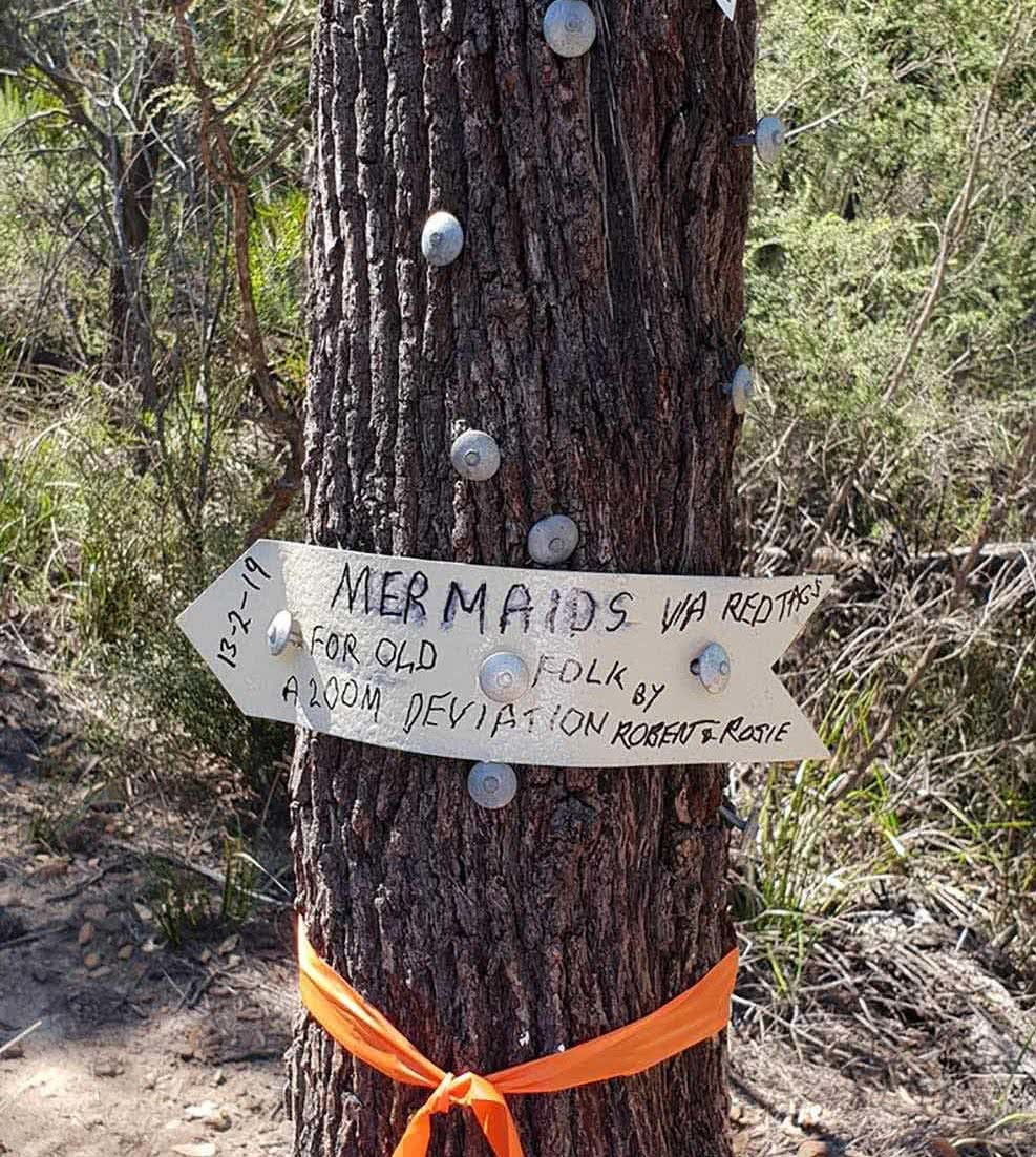 Take The Whole Family To The Mermaid Pools // Tahmoor (NSW), Leonie Waldron, gum tree, hand made sign, directions