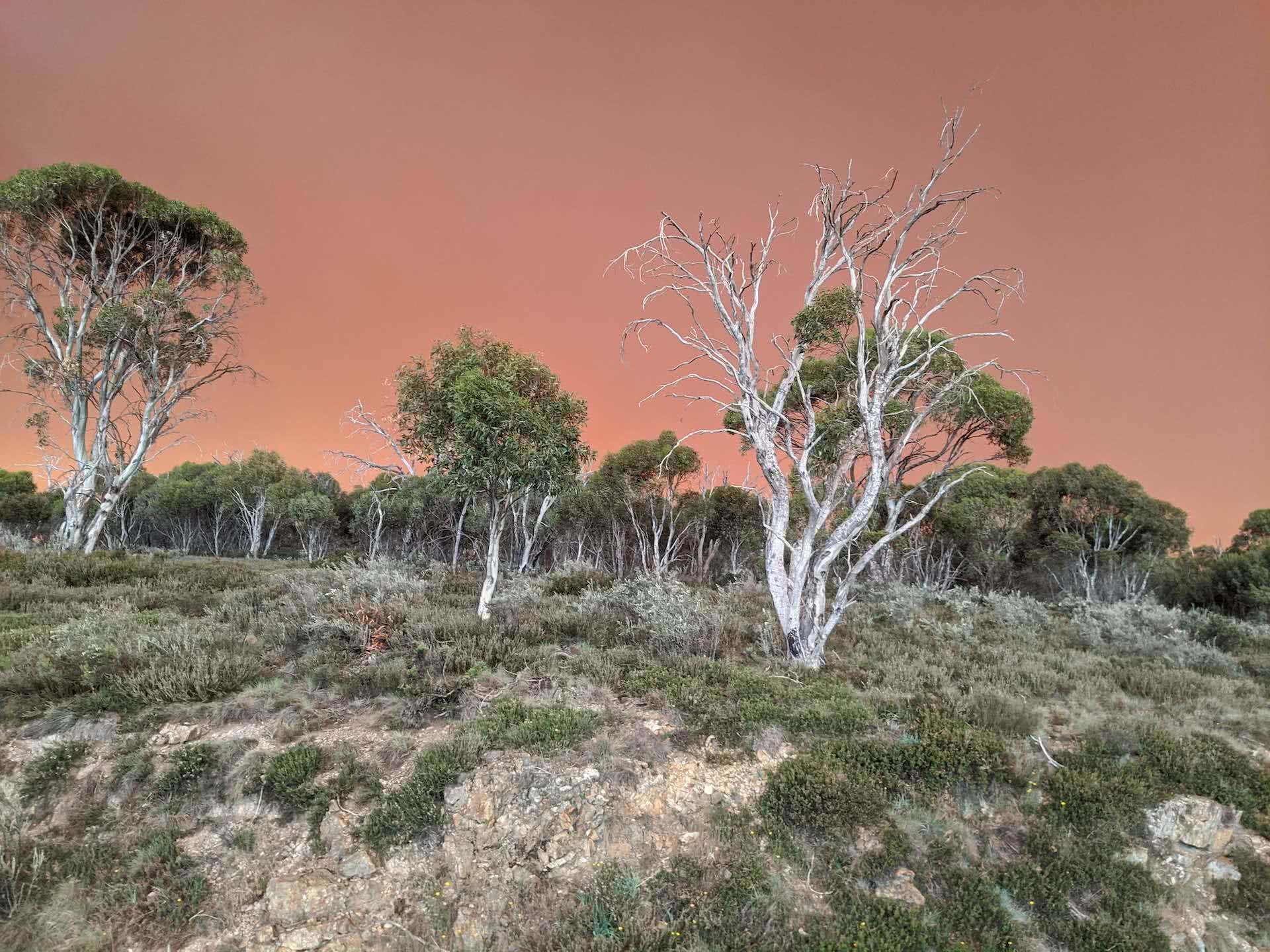 This Is Why You Should Always Register Your Adventures, Alice Forrest, photos by Josh and Kate, Jagungal Wilderness, Snowy Mountains, bike packing, fire, smoke