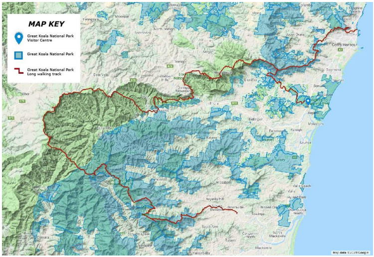 A 25 Day Hike Through Koala Dense National Parks has been Proposed, photo provided by Great Koala National Park Committeee