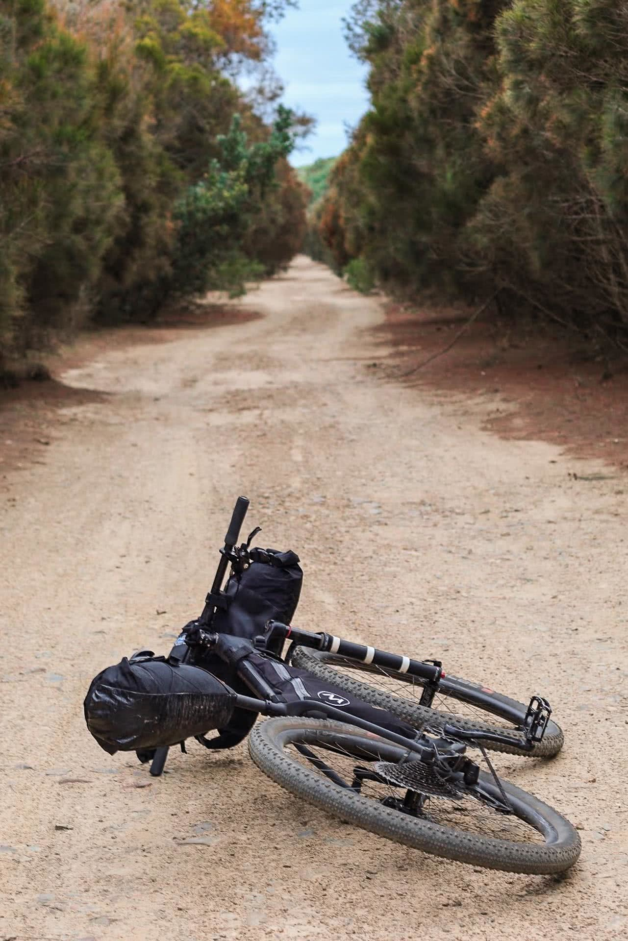 Bikes can take you places, Calm Down, E-Bikes Won't Ruin Your Sunday Ride, shot by Mattie gould, bike, pedal, e-bikes, canberra