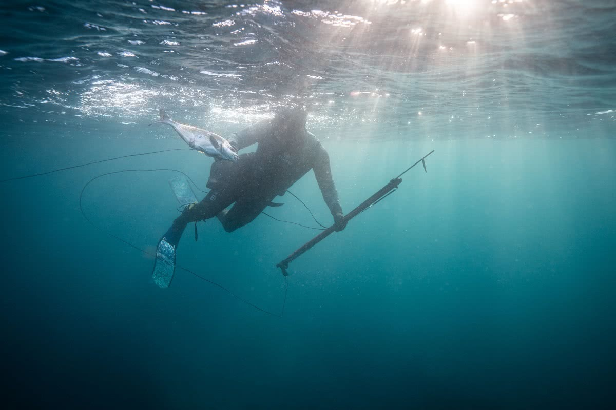 justin jones spearfishing