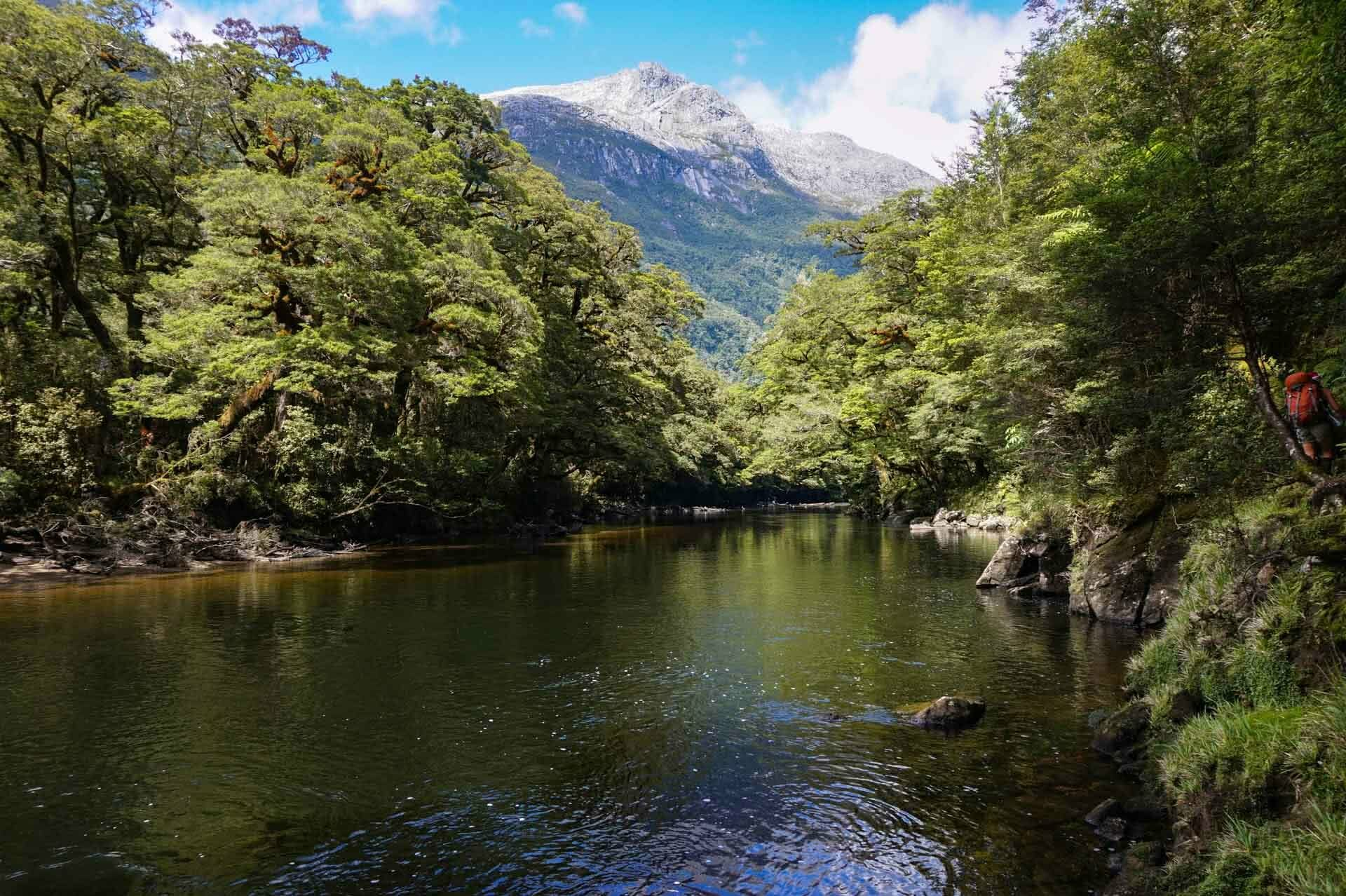 Snow-capped mountains above Seaforth River, dusky track, new zealand's hardest hike, winsome whyte, fiordland, south island, new zealand
