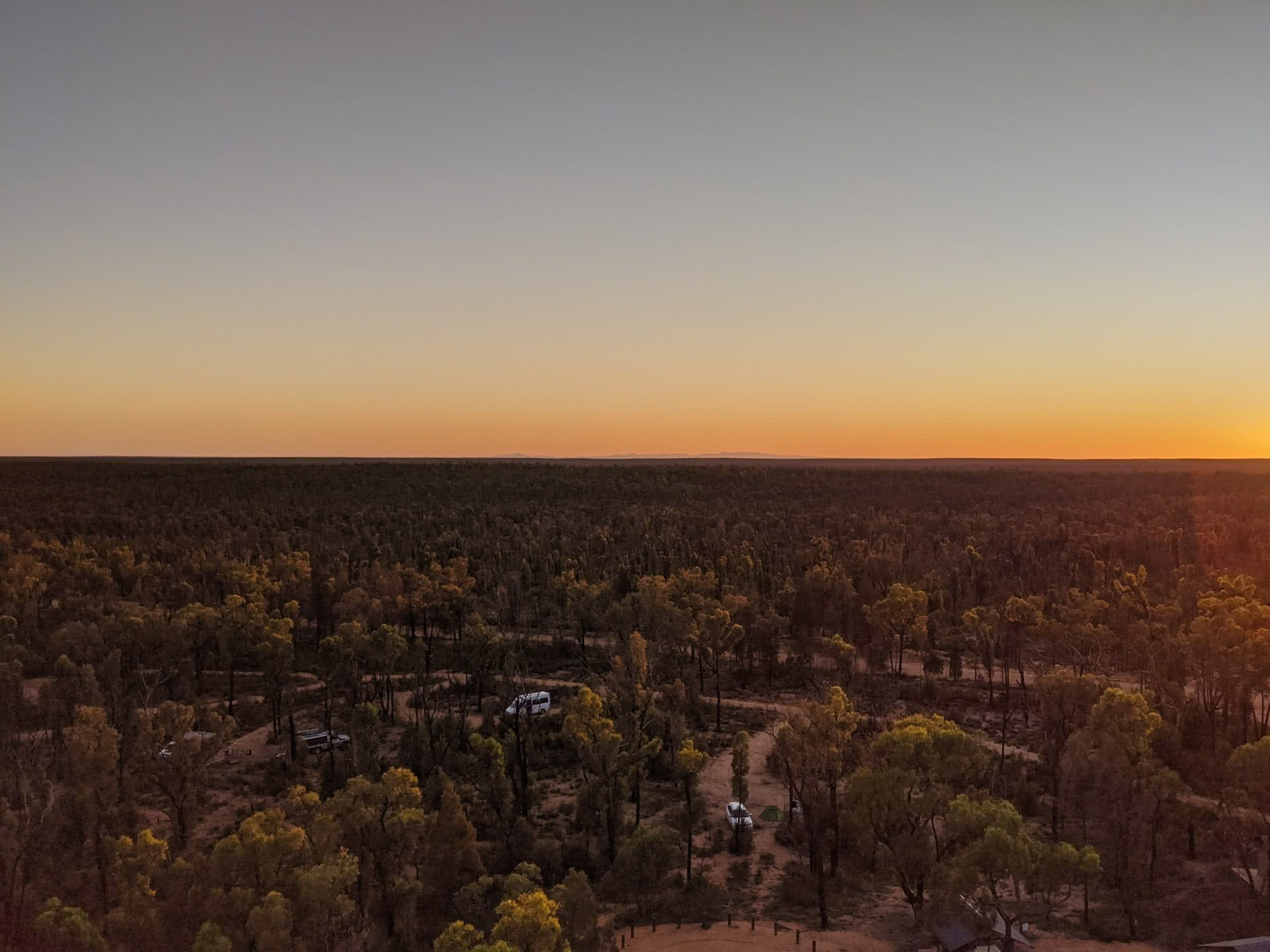 Pilliga Forest is Where Nature and Culture Collide, Amy Fairall, forest, view, sunrise, campground