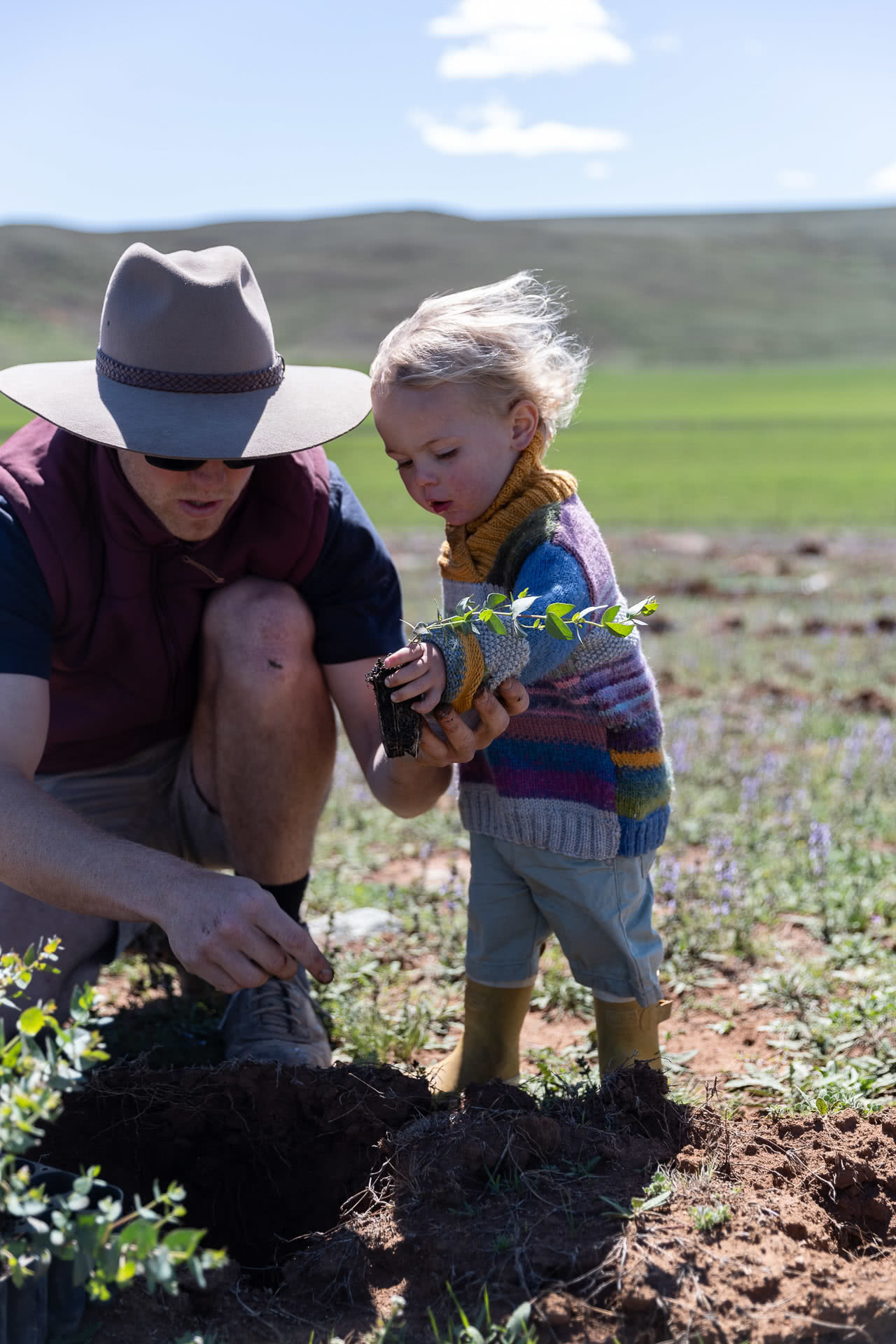 rewild the snowies, keep it cool, campaign imagery, what happens when you plant a tree?, snowy mountains, nsw, baby