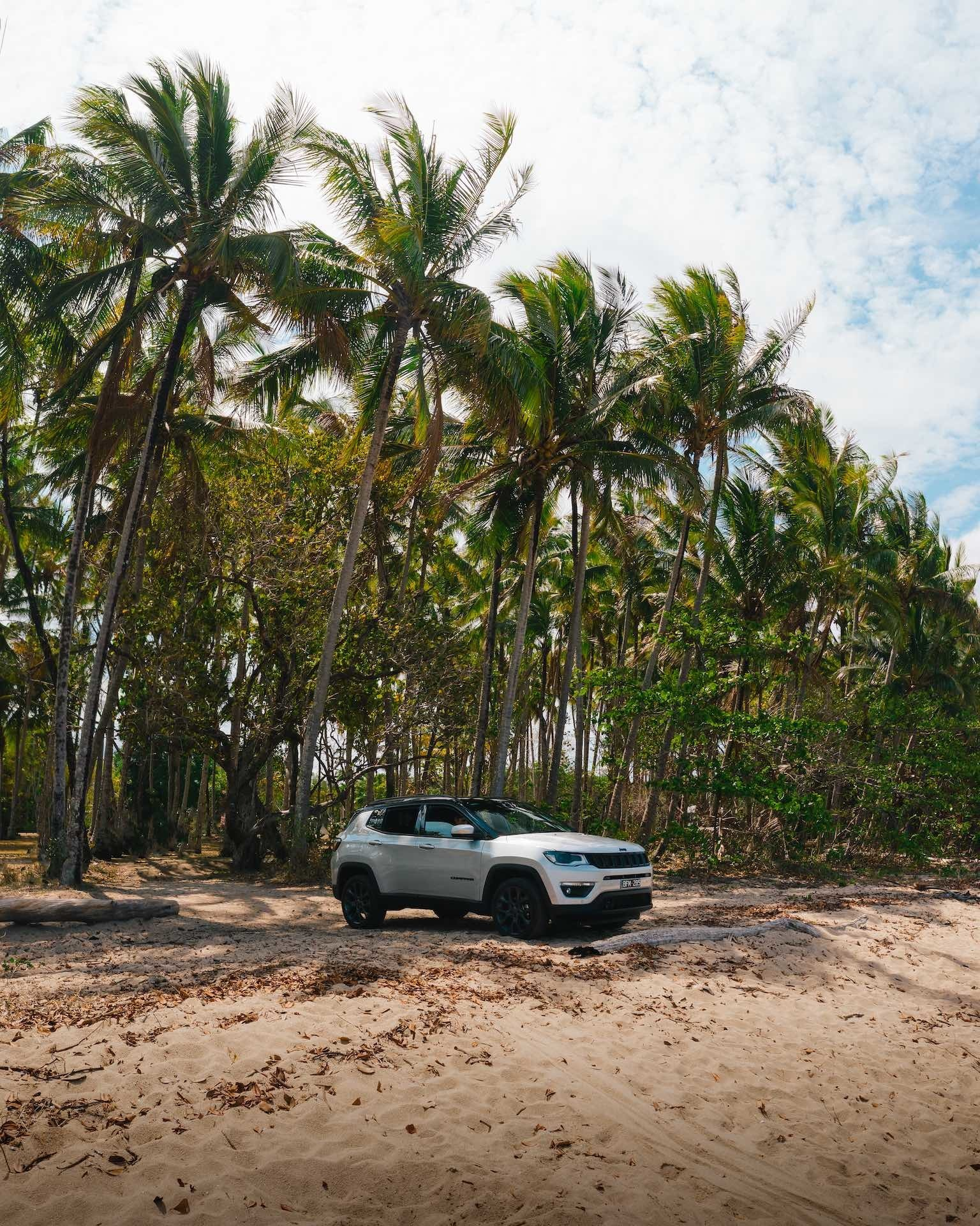 Port Douglas, jeep, fin matson, palms, cairns, great barrier reef drive, queensland
